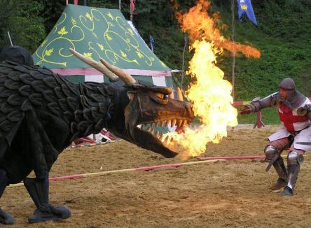 Festival Médiéval fête ses 20 ans, Château Fort de Sedan, marché médiéval, fauconnerie, combat de chevalier