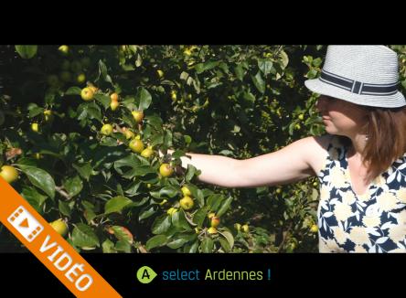 Témoignage d'entreprise : Blandine Capitaine, Les Bulles Ardennaises