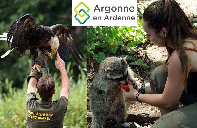 Nouvelles activités, un parc de loisir en croissance, une communication renforcée, le territoire de l'Argonne Ardennaise séduit de plus en plus de visiteurs